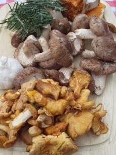 Chef Scott had a variety of mushrooms ready to cook for lunch!